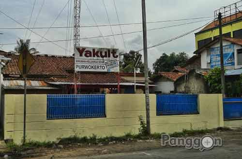 Distributor Yakult Purwokerto